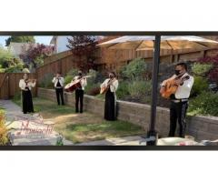 Traditional Mexican mariachi music for all kinds of social events